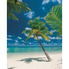 KOMAR - fotótapéta (Ari Atoll)