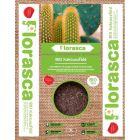 FLORASCA BIO - kaktuszföld (3L)