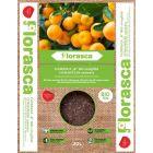 FLORASCA BIO B - citrus virágföld (20L)