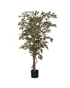 MICA DECORATIONS - selyemvirág (fikusz, zöld-fehér, 150cm)