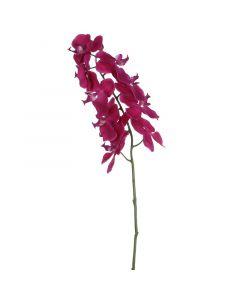 MICA DECORATIONS - selyemvirág (lepkeorchidea, sötétlila, 71cm)