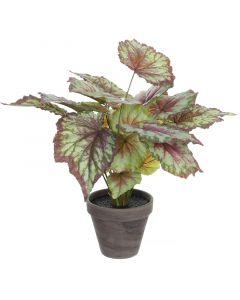 MICA DECORATIONS - selyemvirág (begónia, 40cm)